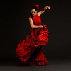 flamenco's Avatar